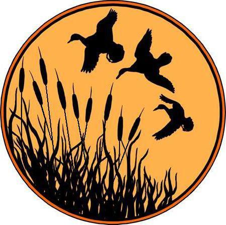Летящие гуси, оригинал