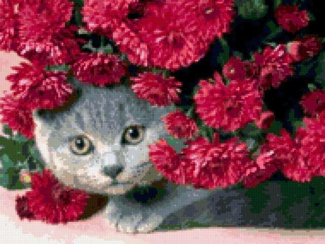 Кот в цветах, предпросмотр