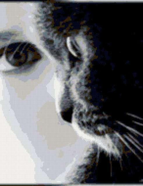 Девушка-кошка, предпросмотр