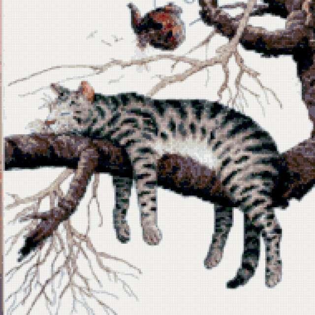 Кот на дереве, предпросмотр