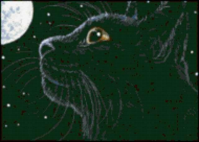 Черная кошка, предпросмотр