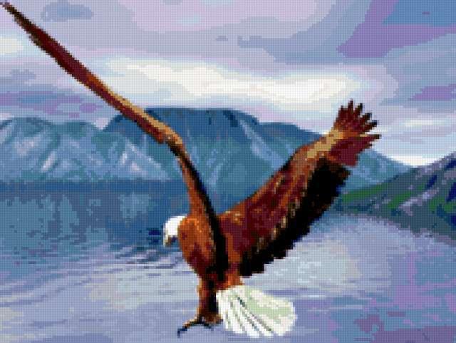 Полет орла, предпросмотр