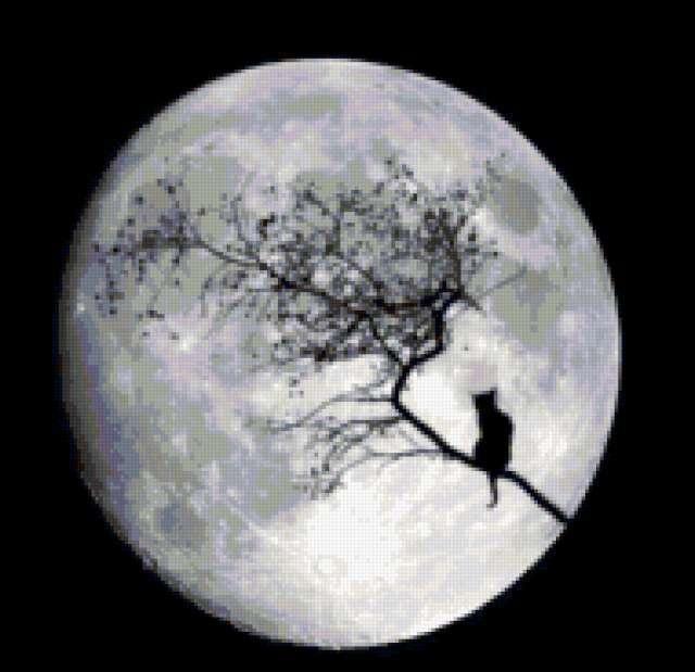 Ночь.Луна.Кот., предпросмотр