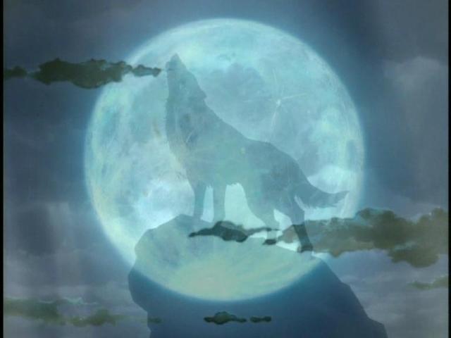 Волк луны, оригинал