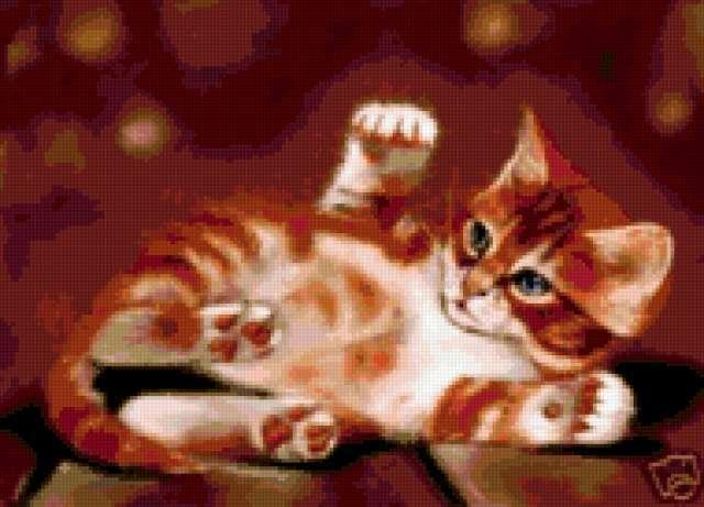 Рыжий котенок, предпросмотр