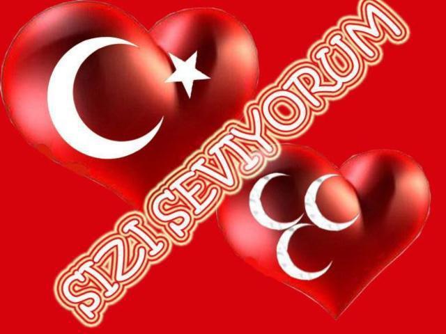 Турция, Турция