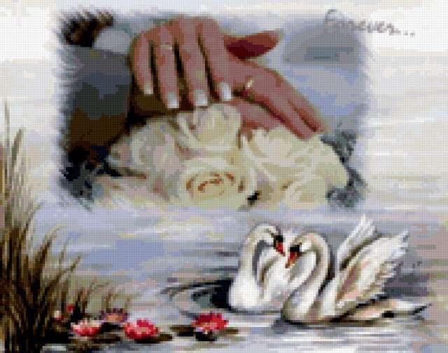 Свадебный мотив, предпросмотр