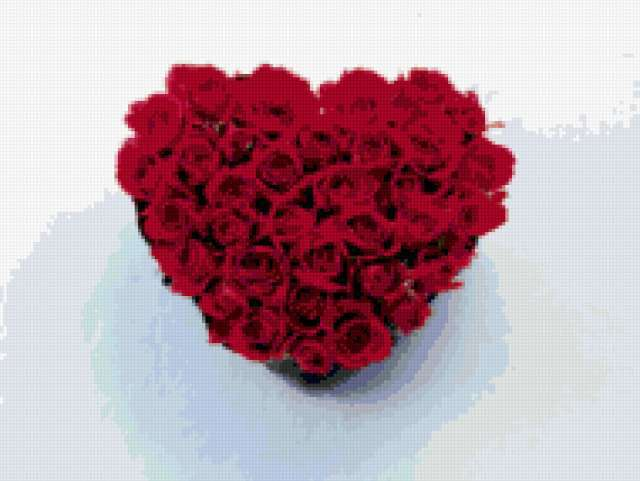 Сердце из лепестков роз,