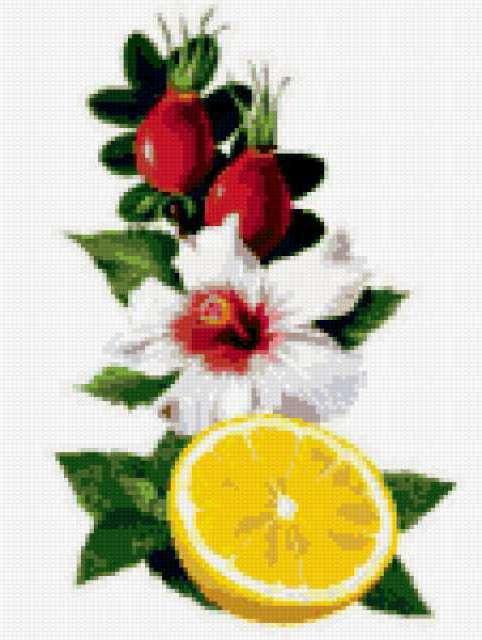 Лимон и шиповник, предпросмотр