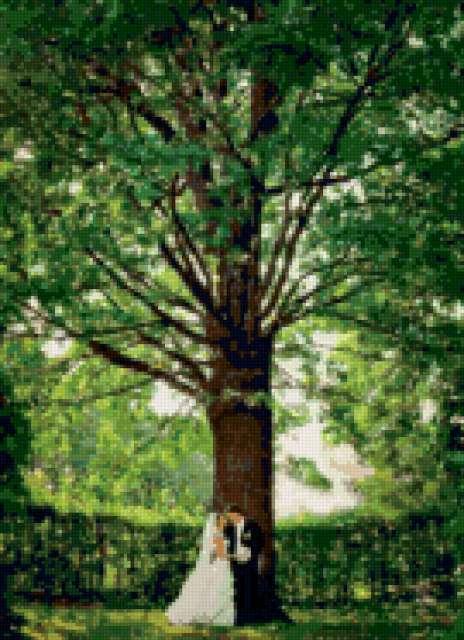 Дерево счастья, предпросмотр