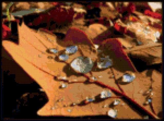 Осень дубовый лист