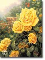A perfect yellow rose, розы