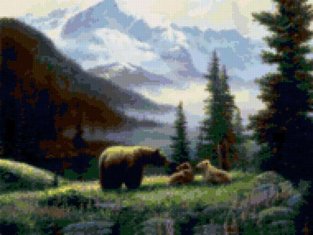 Медведи на природе
