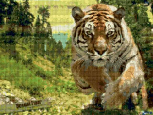 Картинки для вышивки тигр