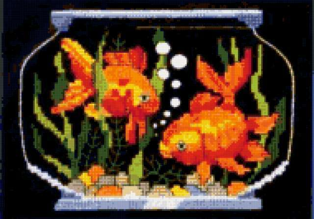 Золотые рыбки, предпросмотр