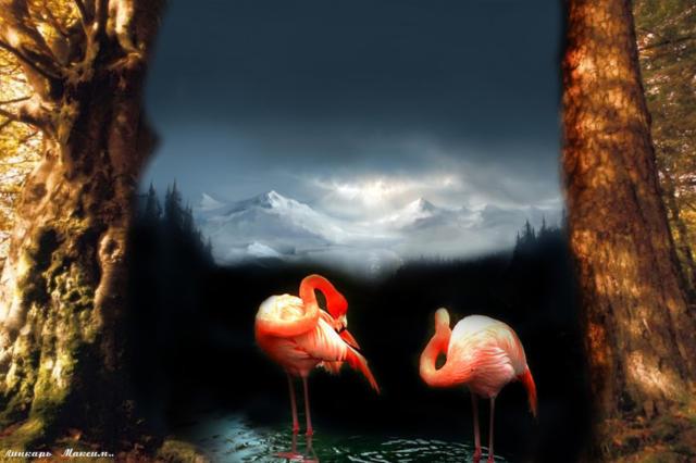 Розовый фламинго, оригинал