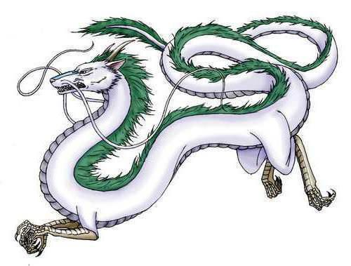 Китайский дракон, дракон