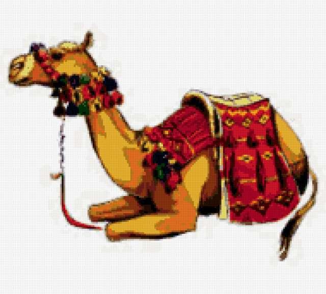 Верблюд-3, предпросмотр