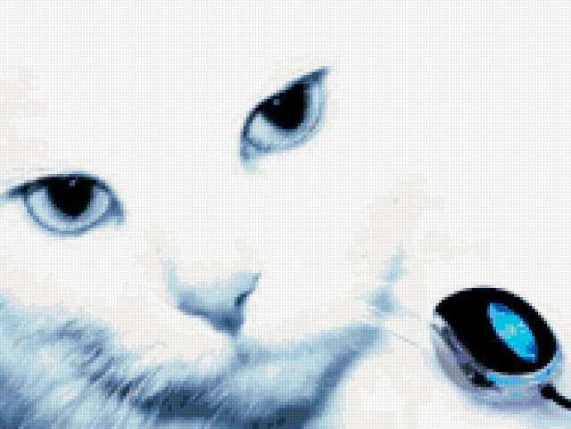 Кошки-мышки, кошки