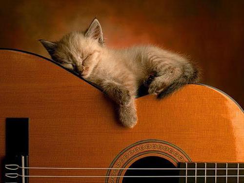 Изгиб гитары, оригинал