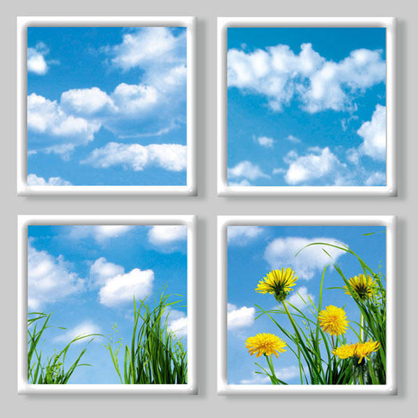 Небо и одуванчики в окне,