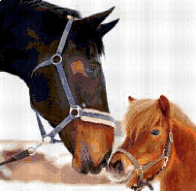 Бодьшой и маленький, лошади