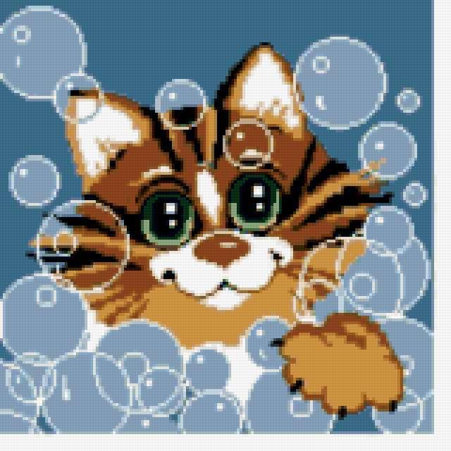 Кот в мыльных пузырях,