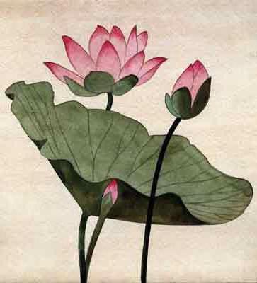Цветок лотоса, оригинал