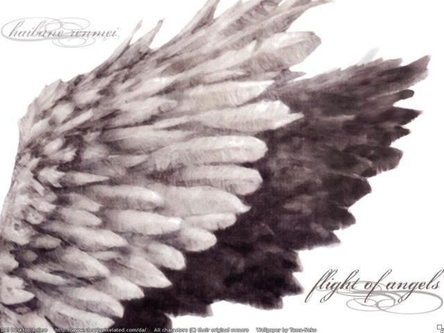 Крылья ангела, оригинал