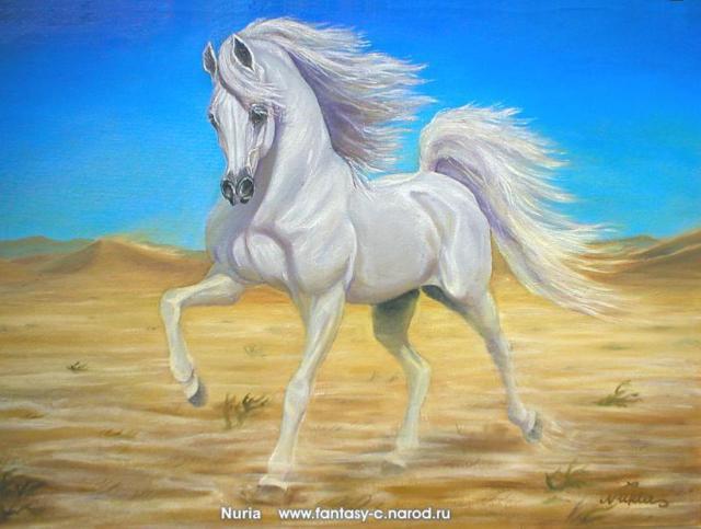 Белый конь, лошади