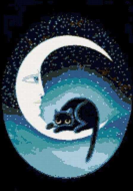 Сон черной кошки, кошка, ночь,