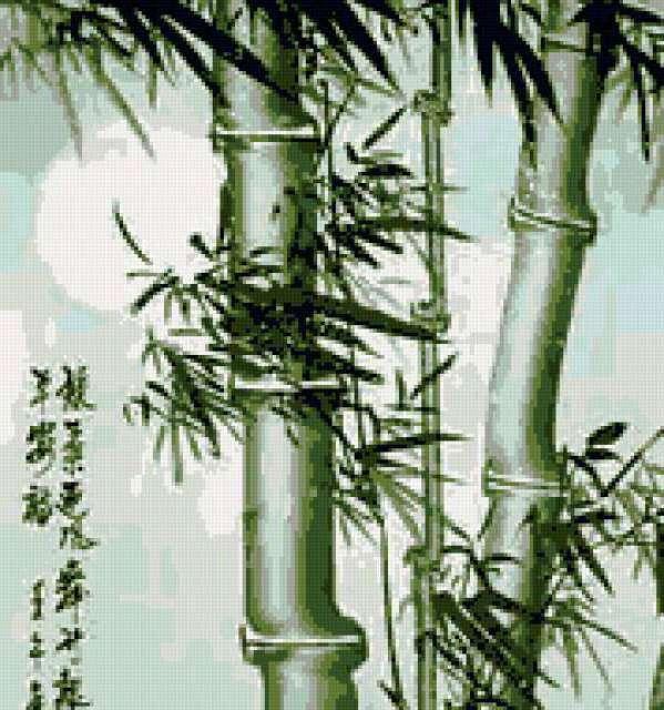 Бамбук 1ч, предпросмотр