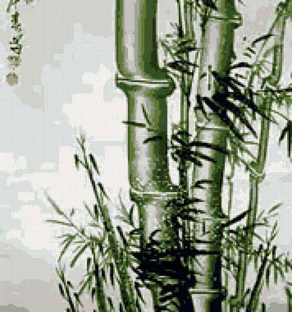 Бамбук 2ч, предпросмотр