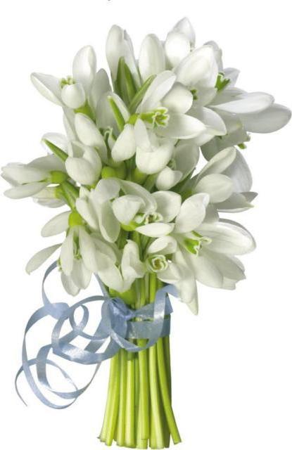Уникальные цветы купить