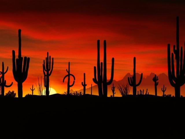 Закат в пустыне, оригинал