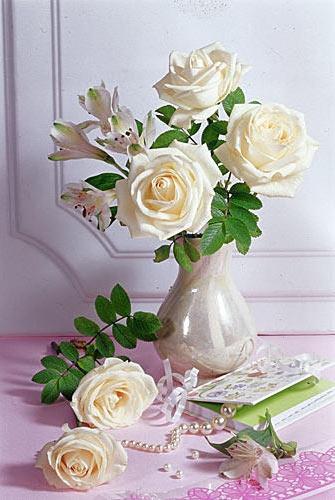 Букет белых роз, цветы, букет,