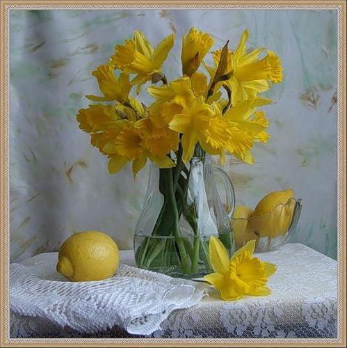 Нарциссы и лимон, натюрморт,