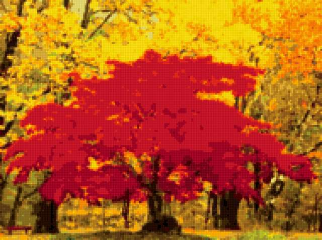 Осенний пожар, предпросмотр