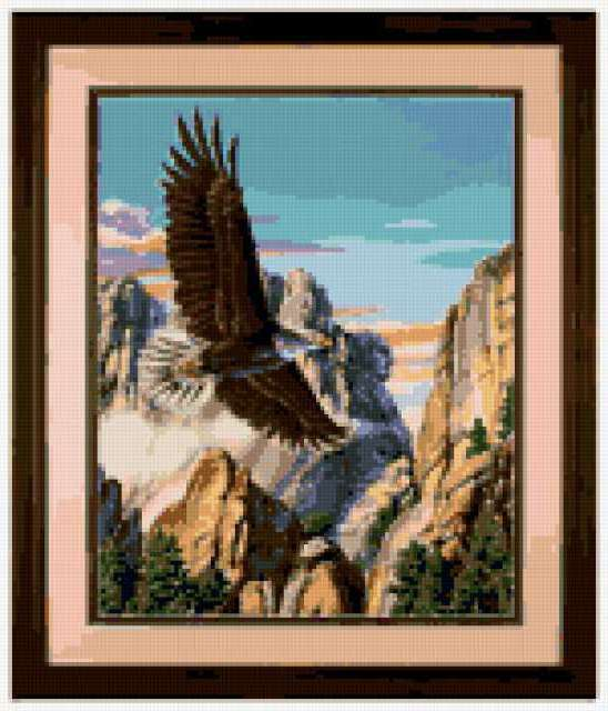 Парящий орел, предпросмотр