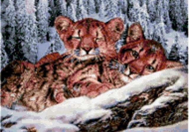 Львята, предпросмотр