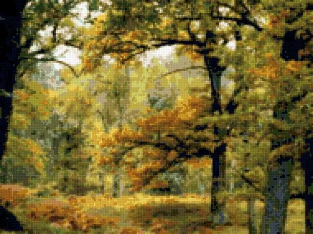 Очарование леса, предпросмотр