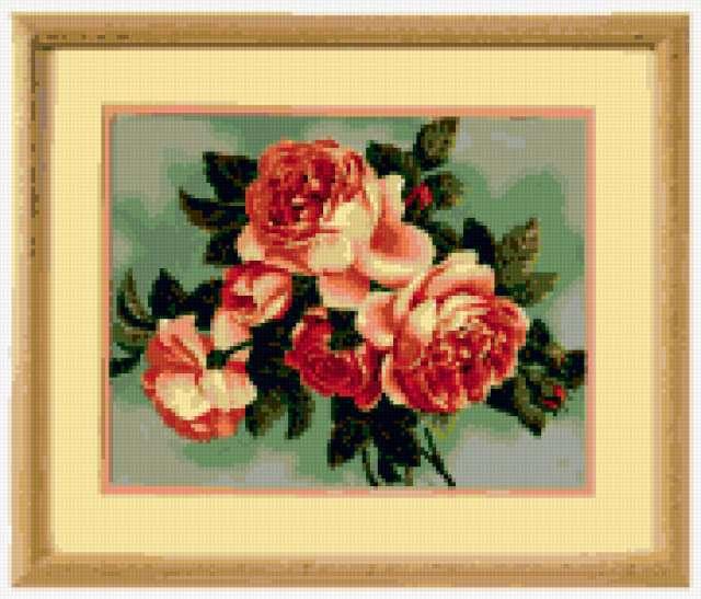 Старинные розы, цветы, розы