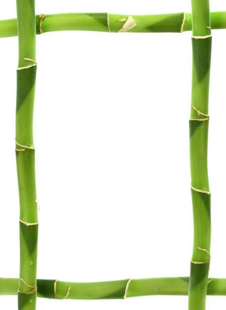 Рамка бамбук, оригинал