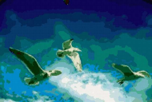 Чайки в небе, предпросмотр