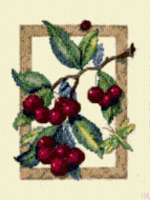Вкус вишни, предпросмотр