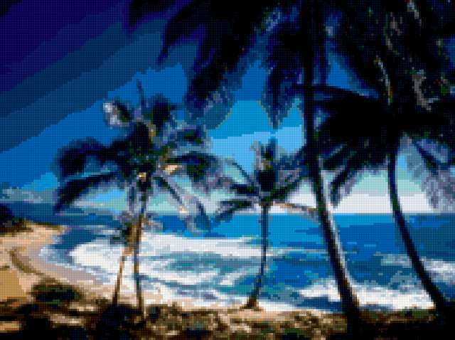 Пальмы, море и восторг,