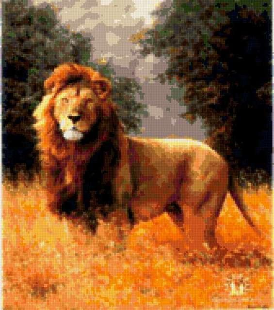 Лев в саванне, предпросмотр