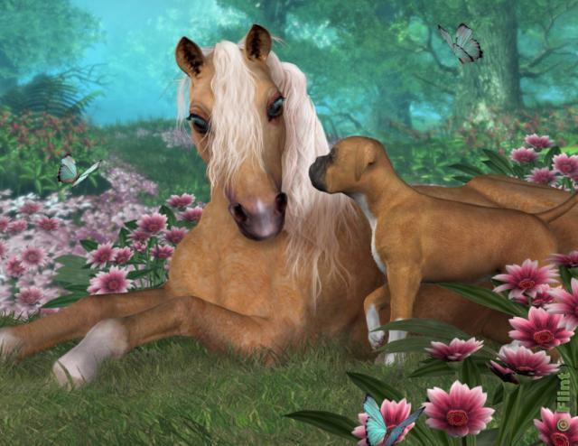Лошадь и собака, животные