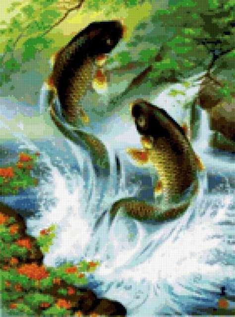 Рыбки, предпросмотр