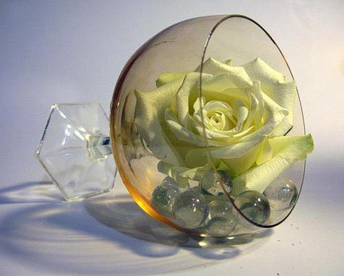 Роза в бокале, оригинал